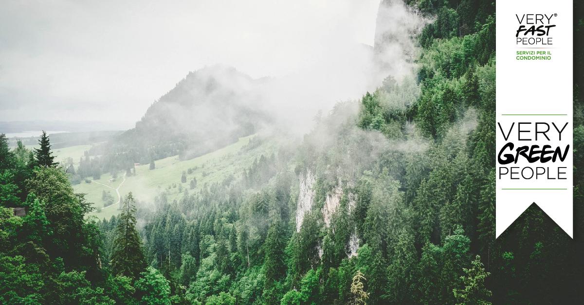 Covid-19: la Terra respira
